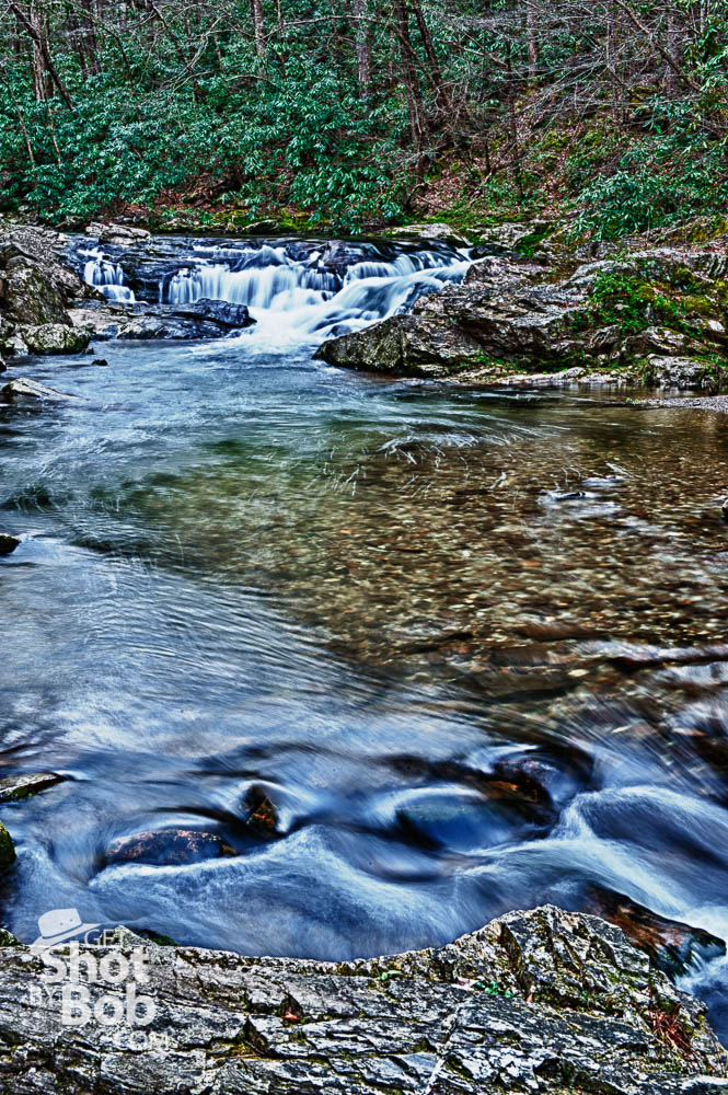 Great Smoky Mountains National Park Photography Class