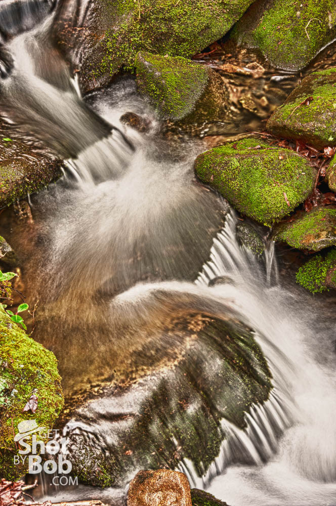 Learn Photography while on Vacation!  Great Smoky Mountains National Park Photo Safari - April 2015