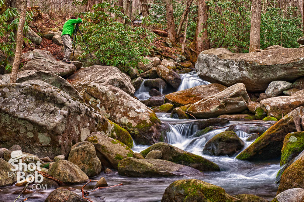 Spring in the Great Smoky Mountains National Park